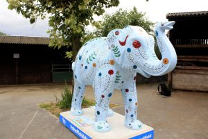 Laura Gray's Herd of Sheffield Elephant - Symbiosis